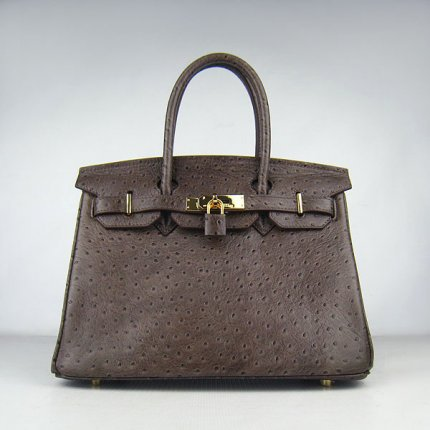 Hermes Handbags Birkin 30 CM Dark Brown Ostrich Stripe Bag